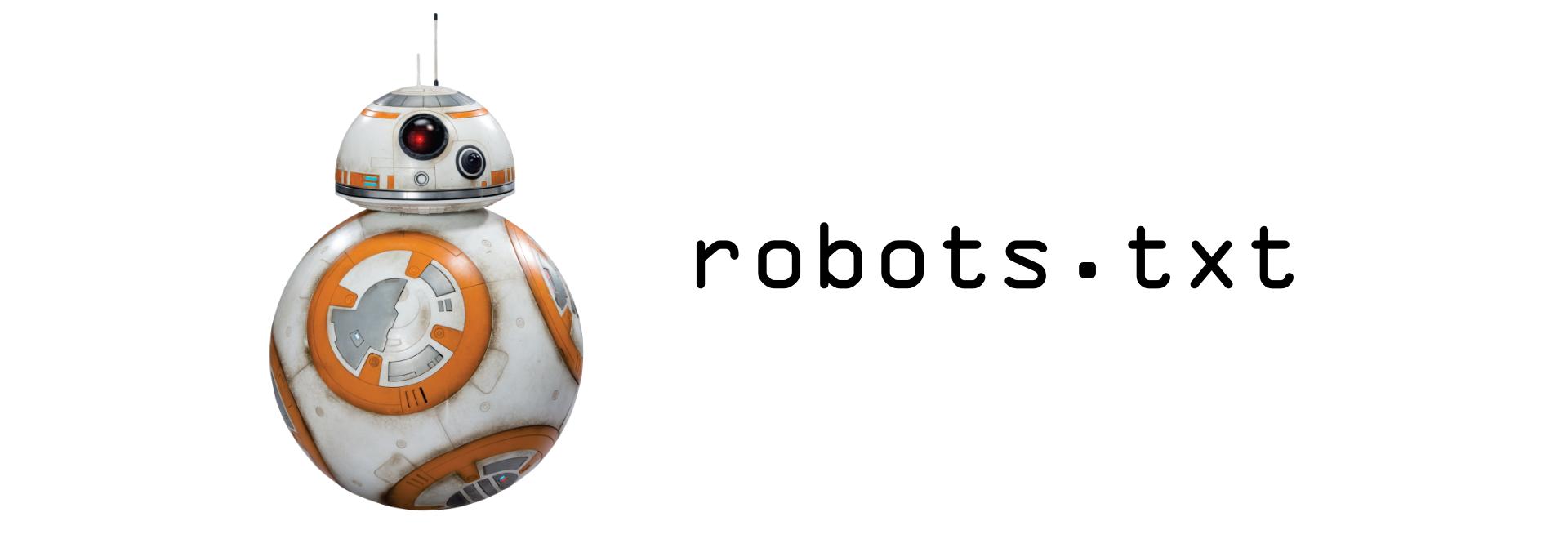Robots Txt Hero Image